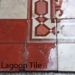 wet cement tiles from scrubbing off years of grime
